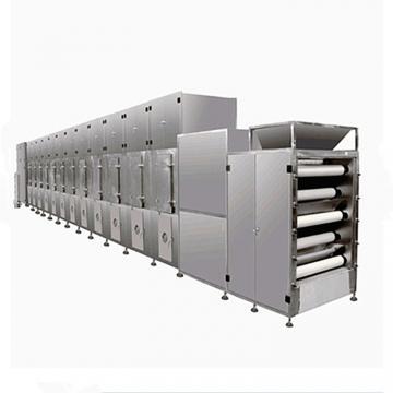 China Mesh Belt Conveyor Dryer Vegetable Carrot Drying Machine