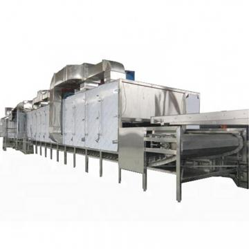 Conveyor Mesh Belt Dryer, Food Fruit Vegetable Drying Machine