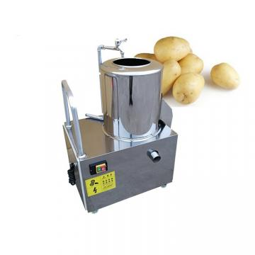 Industrial Brush Potato Peeling Cleaning Machine /Ginger Washing and Peeling Machine Peeler Peeling